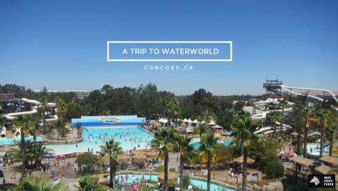 A Trip to Waterworld